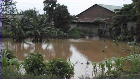 Photo of flooding in western Kenya