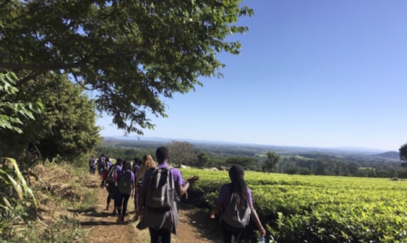 Camp participants on tea plantation field trip