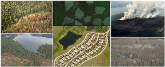 Photo collage illustrating changes in land cover