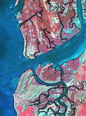 usgs coastline landform